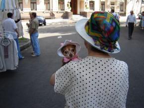 Дама с собачкой.