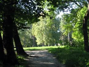 Дорога на ясную поляну
