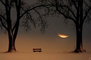 Тишина (из серии «С любовью к Луне»)