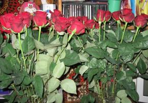 35 роз, для любимой жены