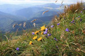 Здесь самый чистый воздух на земле,  и небо властно горы прикрывает. Порывы ветра бьют в лицо тебе Но солнышко лучисто согревает.