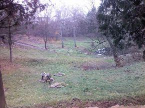 Парк  знаходиться на місці злиття двох ярів