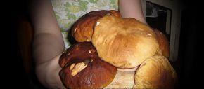 Букет белых грибов))