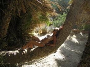 Привал под пальмовыми ветвями
