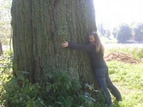Вооот такое большое дерево