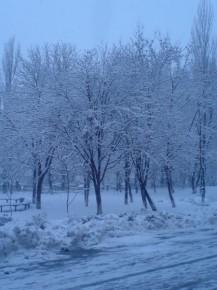 красота!Сейчас бы в снежки.......