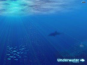 Все мечтаем о бездонной,как океан любви.....