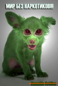 Его зовут, Green Peace.... )))
