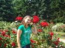 галлерея роз