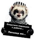 Без коментариев!)))))))))))))))
