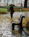 осень в Мариинкском парке