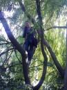 Высоко сижу, далеко гляжу )))