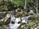 Черногория, Тара