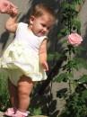 знакомство с розой