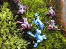 Сад мадам Нонгнуч. Фарфоровые лягушки