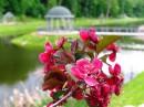 Ротонда на острове . Озеро в Феофании. Майское цветение диких яблонь.