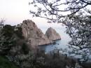 Весенний цветущий Крым, при подъезде к Симеизу вид на гору Дива