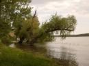 Дунайский биосферный заповедник (до 1998 г. — заповедник «Дунайские плавни») — государственный заповедник на территории Одесской области Украины. Расположен в Килийском гирле реки Дунай.
