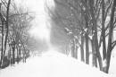 Зима в Славутиче