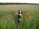 красотень...маки...целое поле:-)