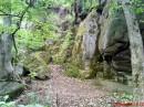 З лівої сторони Південного Бугу впродовж всього заповідника тягнеться вихід гранітних порід. Разом з лісовими зарослями перед нами постає невимовної краси краєвид з природними гротами та пещерами.