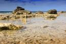 Путешествие к морю. Камни в воде