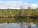 Затишні озера на яких рідко спостерігаються хвилі в поєднані з цілющою водою пом'якшеною опадом чорних вільх дарують чарівну і неповторну казку природи...