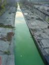 Зелена вода в річці Либідь 4 листопада 2010