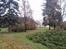 Киевский ботанический сад.Осень. 2010 г.