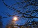 ночь,улица,фонарь, ...