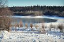 Озеро в Трускавце.