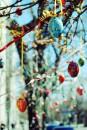 Flowers, photo, girl, froloe, helen froloe, easter, flowers,photo,gallery,пасха,цветы,фото,галлерея, фотографии