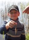 мой сын первый раз сам поймал рыбку!правда какой рыбак, такая и рыбка...мааленькая....