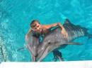 Дельфины )