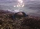 ...маску, плавки и на море...