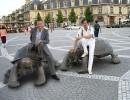 Бордо. 4 года разницы