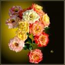 Кущ троянд / Rosebush *  remake