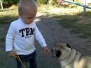 мой сын и добрая соседская собачка)