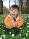Скільки квіточок)))