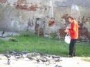 Старушка и голуби