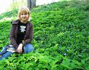 Весна. Цвіте барвінок в Кам'янці-Подільському.