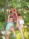 добре жити на деревах