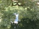 на озері у Воронцовському парку