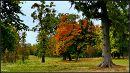 Пятничани, бувший маєток Грохольських (Grocholski). / Pyatnychany, a former manor Grokholsky * 12.10.2011 12:11:52 * Вінниця / Vinnitsya