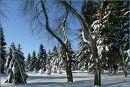 24.03.2013 09:04 * Вінниця / Vinnytsya