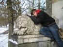 город львов... ...