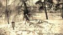 Андрушевка, усадьба Терещенко, старинные фотографии XIX века. Стиль: Старинные фотографии XIX века. Автор: Сергей Ионников.
