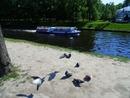 На Мойке,на реке