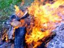 <<<My creative::: FIRE>>>