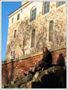 замок Турку Турку, Финляндия 19\11\2006